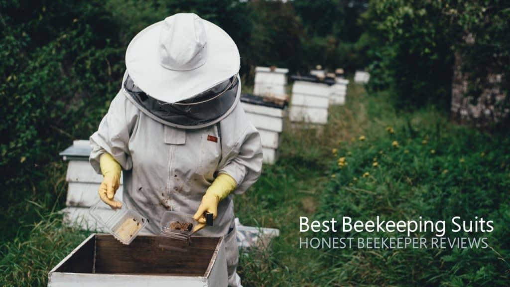 Beekeeper working on a hive