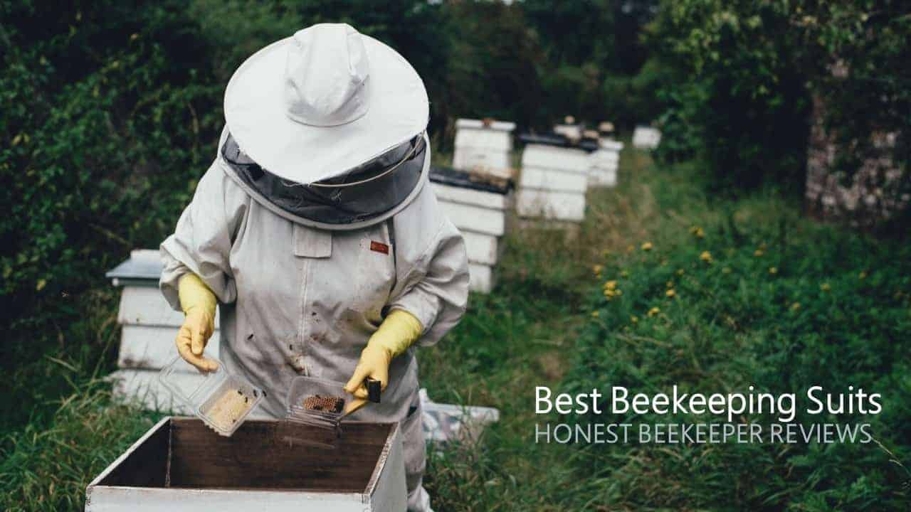 - Clear View Fencing Veil WHITE Natural Apiary/® ZEPHYROS PROTECT/® BEEKEEPING SUIT Keep Fresh /& Comfortable with Maximum Protection EXTRA SMALL - Professional /& Beginner Beekeepers One Piece