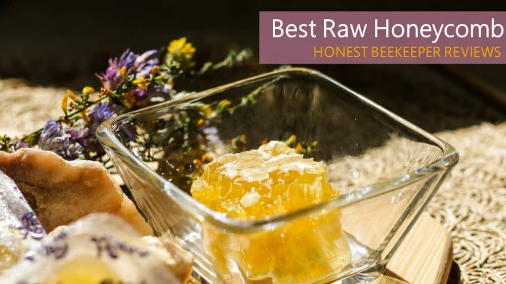 Best Raw Honeycomb Brands That You Can Order Online