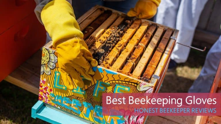 Top List Of The Best Gloves for Beekeeping