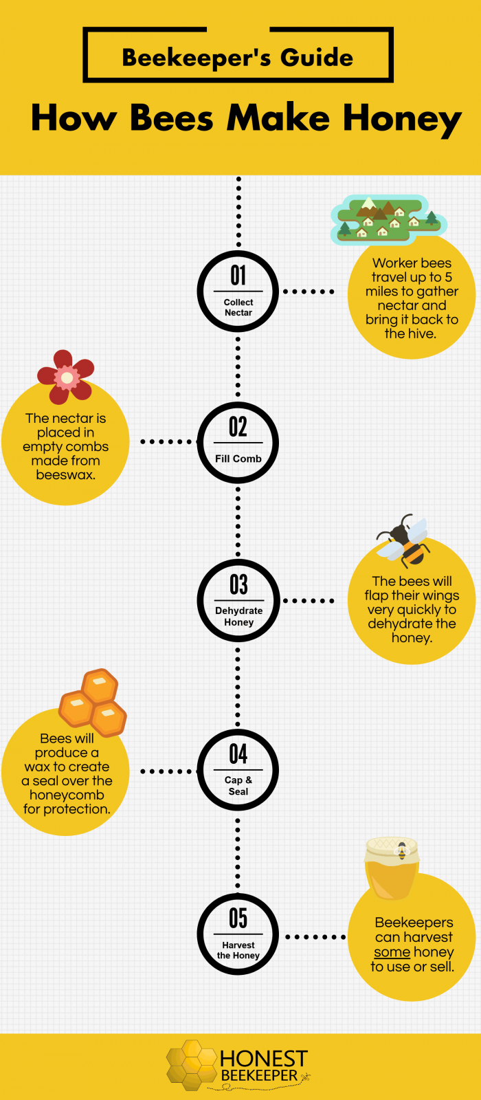 How Bees Make Honey Pictograph